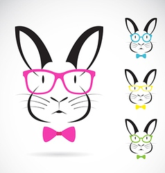 image of a rabbits wear glasses vector image vector image