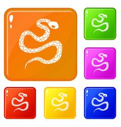 Python snake icons set color vector