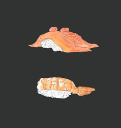 Set of sushi japanese food sketch vector
