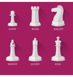 White chess figures vector image