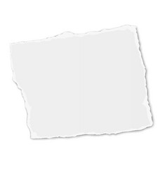 White square paper tear placed on background vector