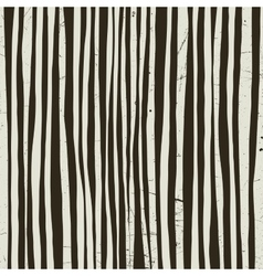 Black and white stripes vector image vector image