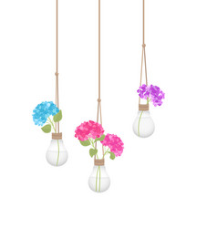 flower in a light bulb vector image vector image