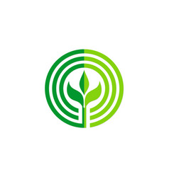 green leaf round seed organic logo vector image vector image