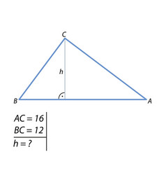 the task of finding the right triangle height-01 vector image