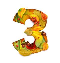 autumn stylized alphabet with foliage digit3 vector image