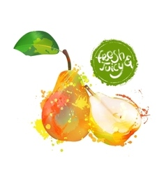 Pear fresh organic food vector image