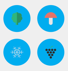 Set simple garden icons elements flake snow vector