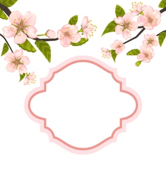 Spring elegant card with blossoming tree branches vector