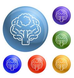 vegan broccoli icons set vector image