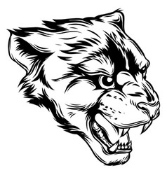 cougar panther mascot head graphic vector image