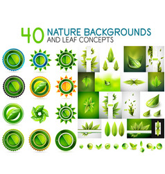 mega collection of nature leaves - green eco vector image