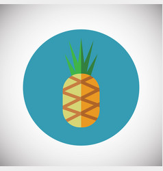 pineapple on fruit background vector image