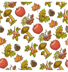 ripe apples mushrooms and rowanberry autumn vector image