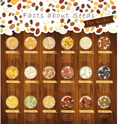 Seeds of seasonings on plates vector
