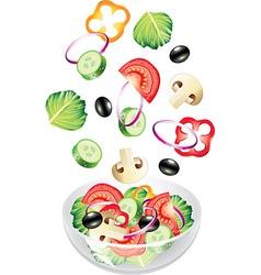 flying salad vector image vector image