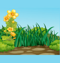 a green nature background vector image