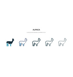 Alpaca icon in different style two colored vector