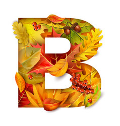 autumn stylized alphabet with foliage letter b vector image
