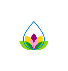 droplet flower beauty logo vector image