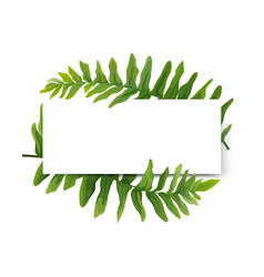 Floral modern card design green forest fern frame vector