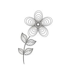 Geranium flower decoration line vector