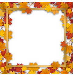 Golden frame in autumn maple foliage vector