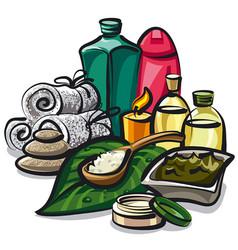 natural spa products vector image