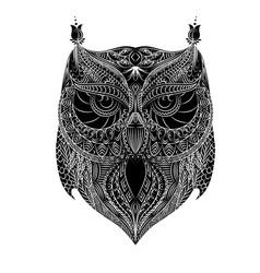 Owl white brush vector