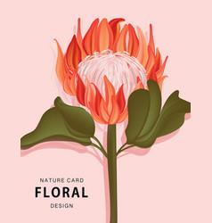 protea flower nature exotic plant realistic 3d vector image