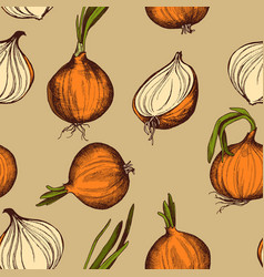 seamless pattern of onions hand drawn vector image