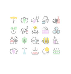 set flat line icons grape vector image
