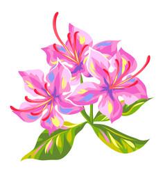 Tropical azalea flower vector