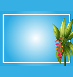 Border template with bird of paradise vector