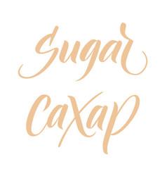 brush calligraphy sugar vector image