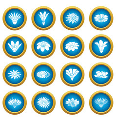 detailed flower icons set simple style vector image