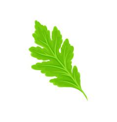 Green leaf tilted to left vector