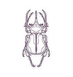 Outline big horn beetle bug insect vector