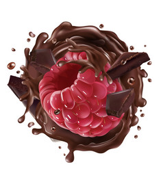 Raspberry with pieces and splashes chocolate vector
