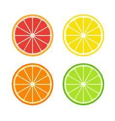 set citrus slices symbols flat design vector image