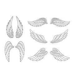 set hand drawn bird or angel wings different vector image
