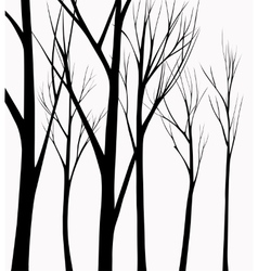 Group of silhouettes trees vector image