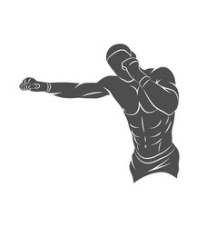mixed martial art vector image