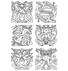 Celtic knot pattern with tribal dragons vector image