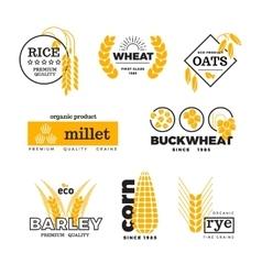 Organic wheat grain farming agriculture vector image vector image
