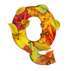 autumn stylized alphabet with foliage letter q vector image