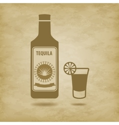 bottle of tequila vector image