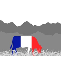 Cow alp and french flag vector image