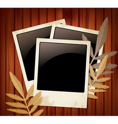 polaroids vector image