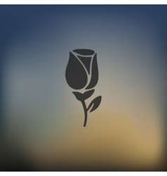 Rose icon on blurred background vector